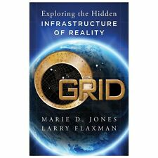 Excellent, The Grid: Exploring the Hidden Infrastructure of Reality, Flaxman, La