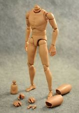NEW 1/6 Caucasian Male Narrow Shoulder Nude Body Figure B001 New Version