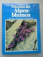 Fotoatlas der Alpenblumen Blütenpflanzen der Ost- und Westalpen 1981