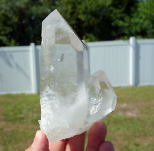 LEMURIAN SEED Star Quartz Crystal Dolphin Penetrator POINT Wand & Record Keepers