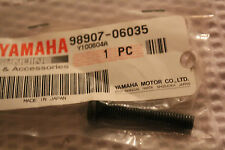 YAMAHA YXR450 YXR 450 RHINO FRONT FENDER BIND SCREW GENUINE OEM 2007-2009