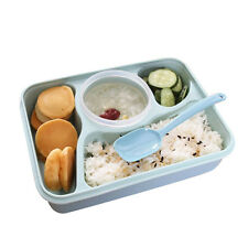 New Plastic Bento Lunch Box for Kids Lunch Boxes Spoon Food Container Lunchboxes