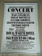FRIEDRICHS ATAXIA BENEFIT GIG POSTER 1985 DUNLAOGHAIRE UNRELEASED RARE VALUABLE