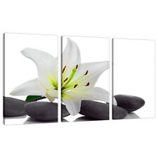 Set of 3 Black White Floral Wall Pictures Split Canvas Art Prints 3024