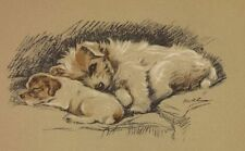 Fox Terrier Pups - Lucy Dawson Dog Print - MATTED