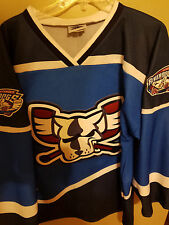 EUC VINTAGE RICHMOND RIVER DOGS 3RD MINORS HOCKEY JERSEY SIZE MEDIUM ADULT