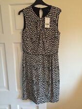 Next Dress. Rand New With Tag Size 12