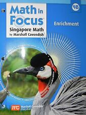Math in Focus Singapore Math Enrichment Math in Focus, Grade 4 workbook B