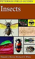 A Field Guide to Insects: America North of Mexico Peterson Field GuidesR))