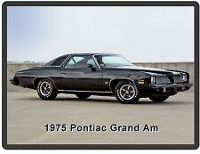 1975  Pontiac Grand Am Auto Car  Refrigerator / Tool Box  Magnet