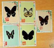 REAL BUTTERFLY Applied BUTTERFLIES 5 Postcards posted JAPAN 1966