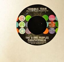 The U-DWI Peoples Paraphernalia BRC 102 Terrible Train and Push And Pull