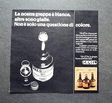 K364- Advertising Pubblicità -1975- GRAPPA STRAVECCHIA VITE D'ORO , CAMEL