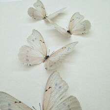 4  Ivory- Cream Sparkling 3D Butterflies Bedroom Wedding Home Decor Butterfly