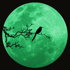 Luminous Planet Wall Stickers World Moonlight Glow In The Dark Moon Wallpaper