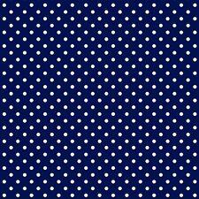 Baumwollstoff 100% Meterware 0,5lfm 1,6m breit Kleiderstoff Punkte Blau 2 mm