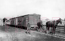 Southern Pacific Coast (SPC) Horse Train at Centerville, CA in the 1890s - 8x10