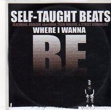 (EQ435) Self-Taught Beats, Where I Wanna Be - DJ CD