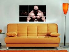 "BROCK LESNAR LARGE 35""X25"" INCH MOSAIC WALL POSTER WWE TNA WRESTLING"