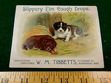Cute Puppies Slippery Elm Cough Drops, W.M. Tibbetts Candy Victorian Card #T