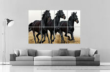 CHEVAL NOIR BLACK HORSE PURE RACE Wall Art Poster Grand format A0 Large Print