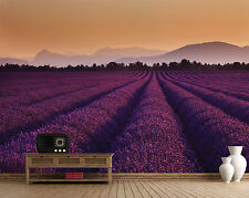 Large bedroom & living room paper wallpaper 232x315cm Lavender Fields in France