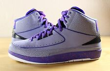 New Nike Air Jordan 2 II Retro Iron Purple Infrared 23 Black 385475-553 Sz 10.5