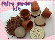 FAIRY GARDEN KIT mini terracotta pot set WOODEN STEPPING STONES , fairy door,