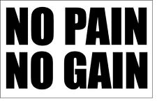 NO PAIN NO GAIN - Vinyl Sticker - Fitness / Diet / Weight Loss/Fun 18 cm x 14 cm