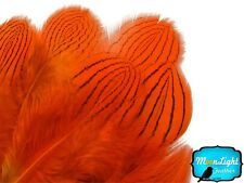Pheasant Feathers, Orange Silver Pheasant Feathers - 1 Dozen