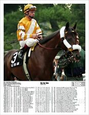 Go fo Gin 1994 Kentucky Derby Winner with Past Performances