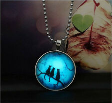 Fashion Punk Style Dark Cat Glow in the Dark Stainless Steel Necklace Pendant !