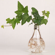 Light Bulb Stand Glass Flower Vase Hydroponic Container Home Wedding Creative Un