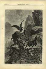 1874 Eagle Hunting Chamois In Tyrol Torpedo Practice Cherbourg