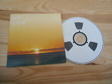 CD Indie Arp - In Light (7 Song) Promo SMALLTOWN SUPERSOUND