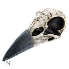 Raven Skull | Edgars Inscribed Crow Head | Gothic Statue Figurine Ornament | NEW