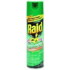 11oz Raid House & Garden Insect Killer 1672 12Pk