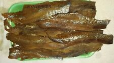 Smoked Herring  Salted  Fish  3 lb