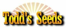 Todd's Seeds - Hard Red Wheatgrass - 5 Lb's - Sprouting Wheat Grass Seeds for...