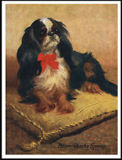 KING CHARLES ENGLISH TOY SPANIEL DOG ON A CUSHION LOVELY DOG PRINT POSTER