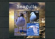 Guyana 2015 MNH Seagulls II 3v M/S Birds Franklin's Gull Black-legged Kitiwake
