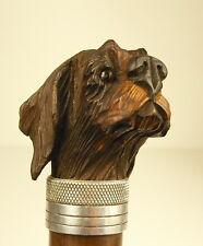 Canne ancienne pommeau tête de chien Pékinois cane with Pekingese dog pommel