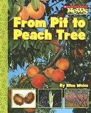 From Pit to Peach Tree (Scholastic News Nonfiction Readers: How Things Grow)