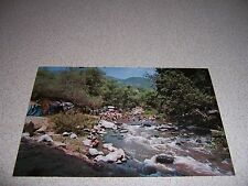 1970s RIVER VIEW of LAJOLLA INDIAN CAMPGROUND VALLEY CENTER CALIFORNIA POSTCARD