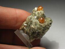 SPESSARTIN Kristalle auf Matrix (Tanzania) Spessartine Crystal Specimen #sps10