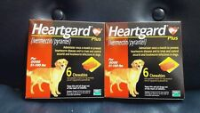 2 Boxes Heart Guard Plus 6 Doses Chewables for Dogs 51-100 Pounds