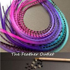 Feather Hair Extensions Kit Lot 20 Grizzly long Real Tie Dye Ombre MIX KIT