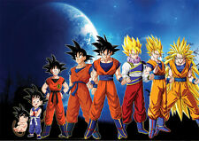 POSTER A4 PLASTIFIE(1 FREE/1 GRATUIT)*.MANGA DRAGON BALL Z.SANGOKU EVOLUTION