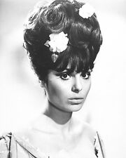 "Daliah Lavi James Bond 007 10"" x 8"" Photograph no 1"