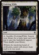 Evolving Wilds NM X4 Conspiracy: Take the Crown Land Common